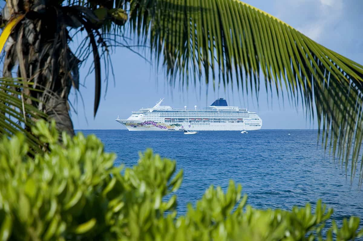 Cruiseship at sea as seen from shore with palm trees